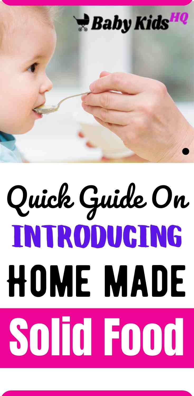 Introducing Home Made Solid Foods A Quick Guide