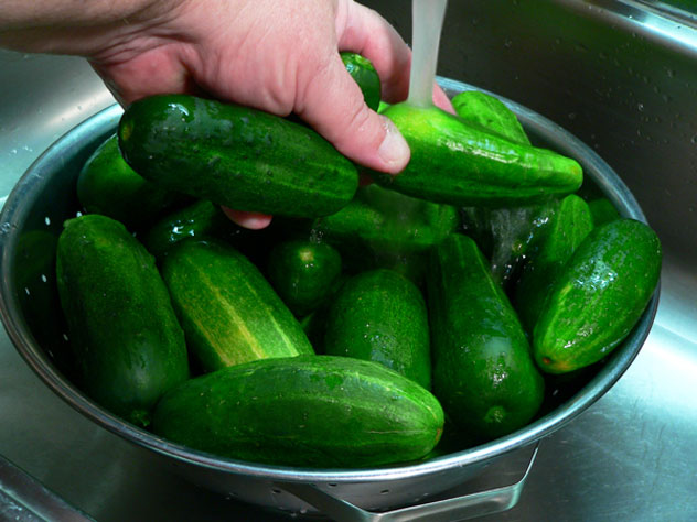 Gently rinse the cucumbers again, under cool running water.  Place in a colander and let drain.