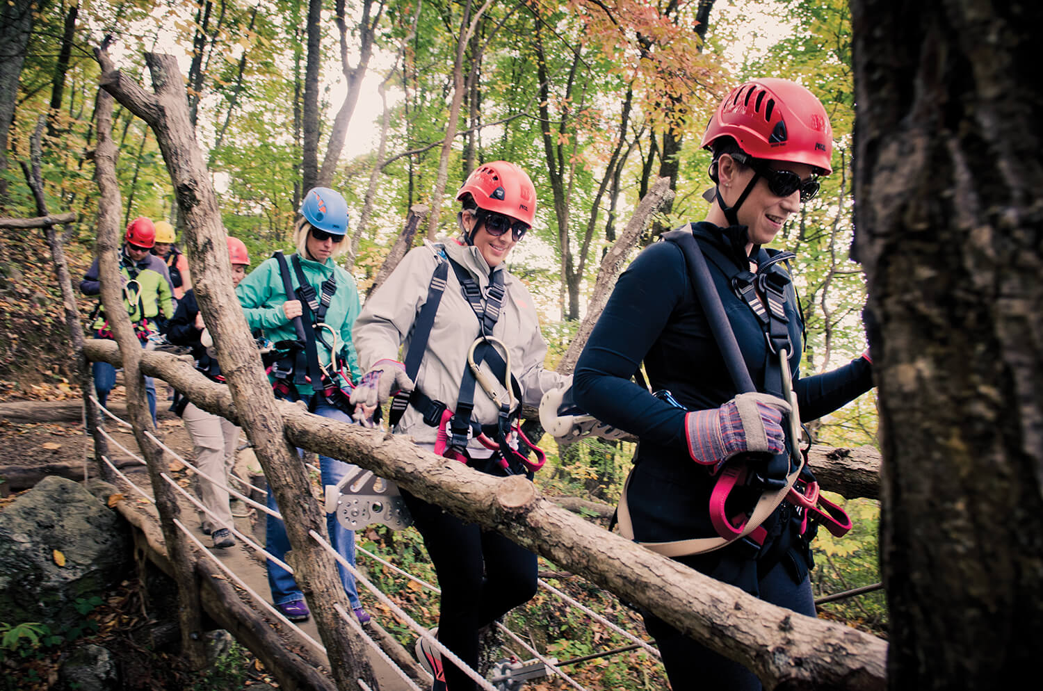 Don't look down: The Moody Cove Adventure lets you zip, rappel, hike, and more during your three-and-a-half hour tour.