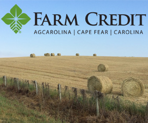 carolina farm credit image