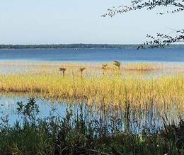 nc-parks-7 National Trails Day Lake Waccamaw