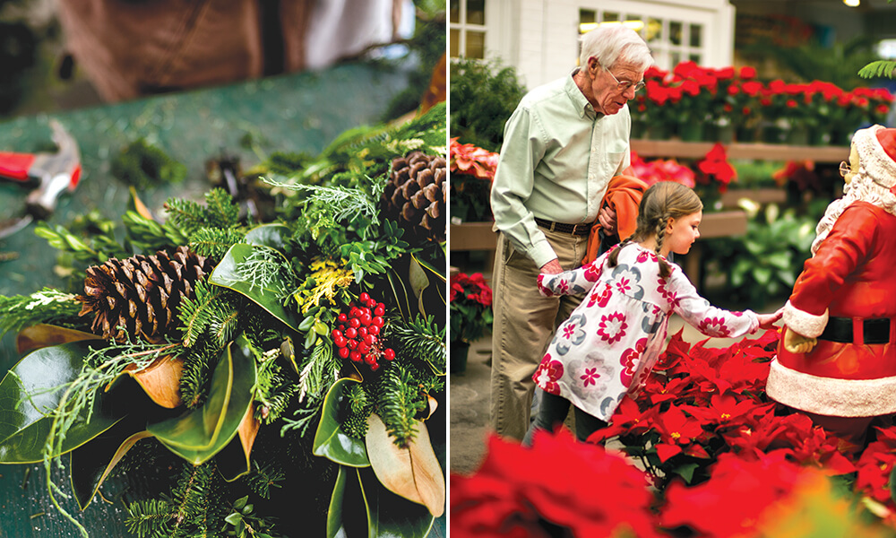 4 Family-Owned Garden Centers