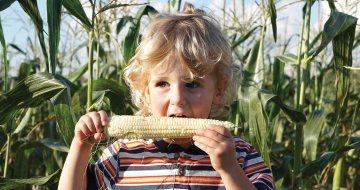 Family Tradition: Farm Fresh