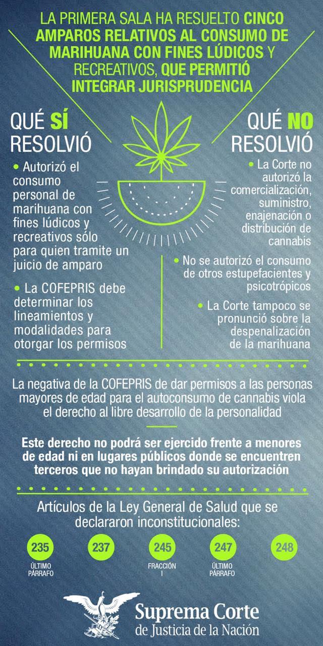 Marijuana-infography.jpg
