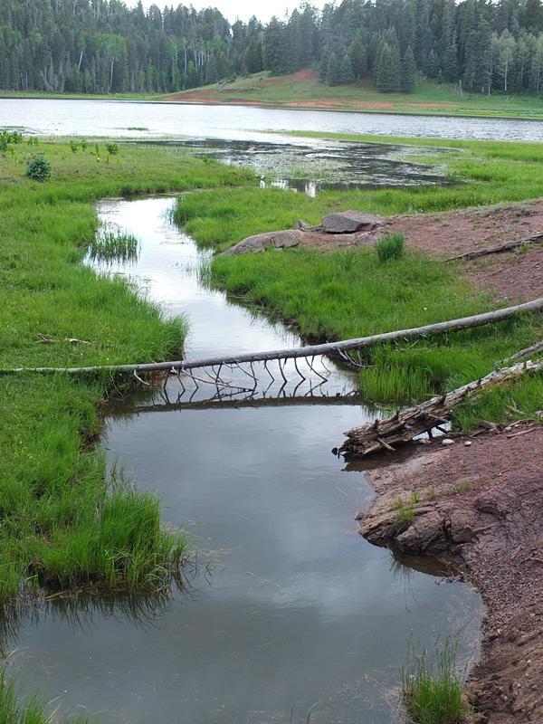 Clear Creek into San Gregorio Lake