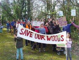 Save Southwark Woods