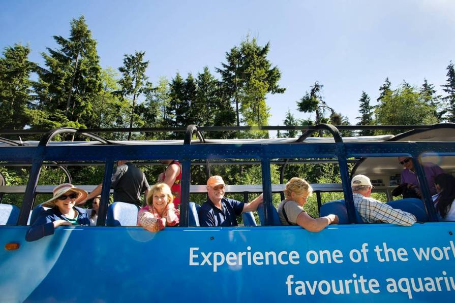 48-Hour Vancouver Hop-On, Hop-Off City Sightseeing Pass
