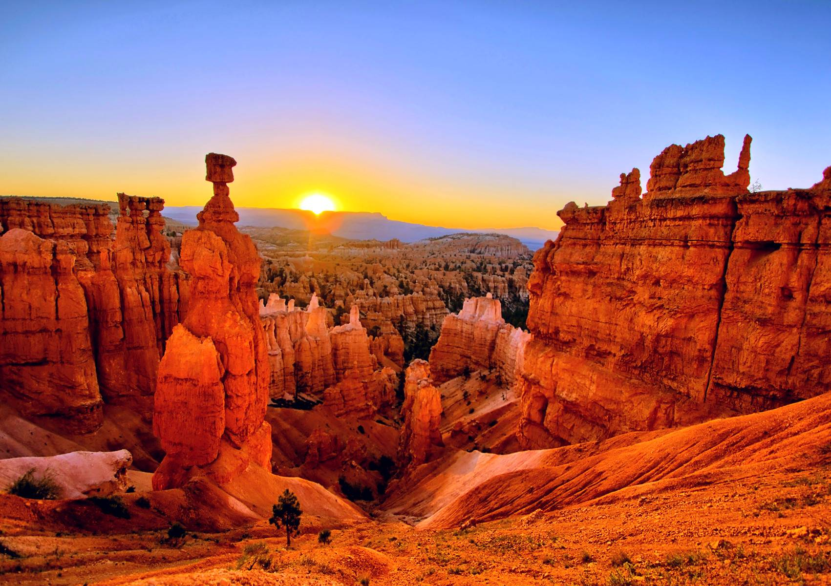 Image result for grand canyon