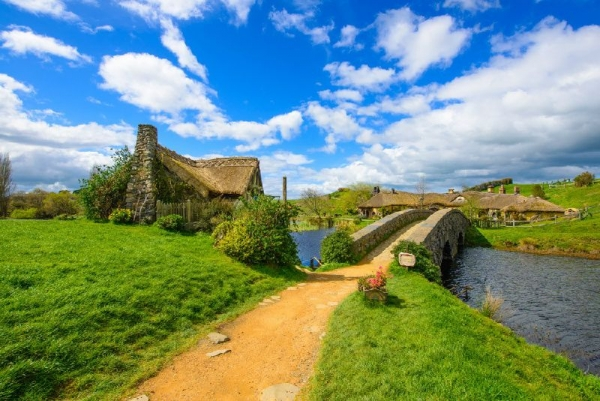 Waitomo Glowworm Caves & Hobbiton Day Trip From Auckland