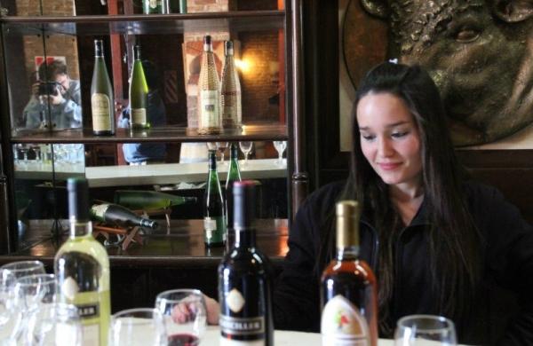 Premium Mendoza Wine Tour