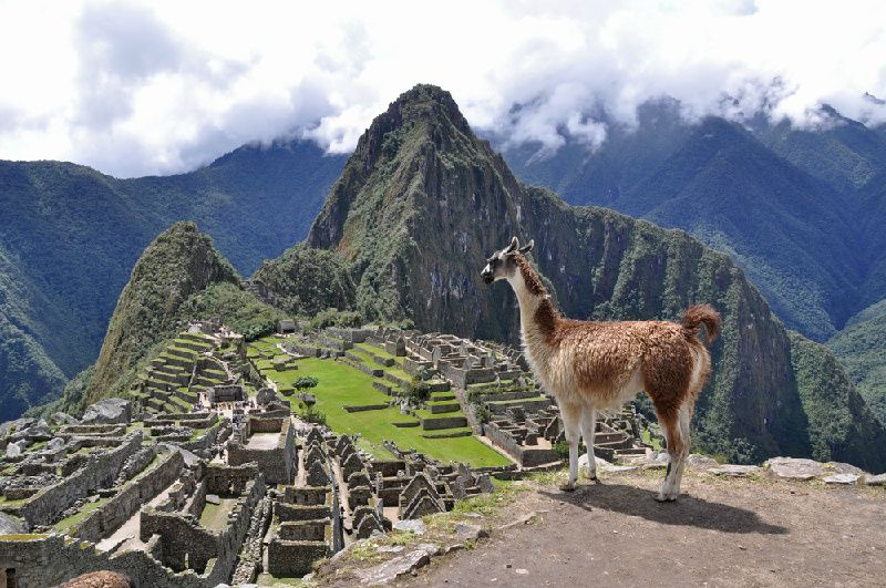 Full Day Machu Picchu Adventure