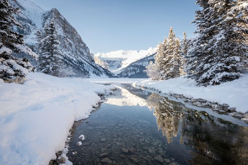 Lake Louise and Snowshoeing Day Trip From Calgary