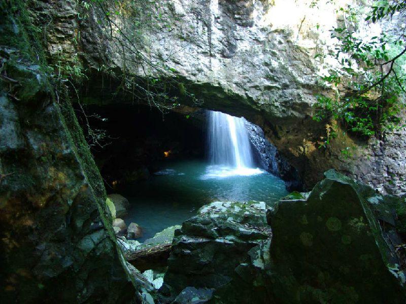 Gold Coast City Tour W/ Springbrook National Park