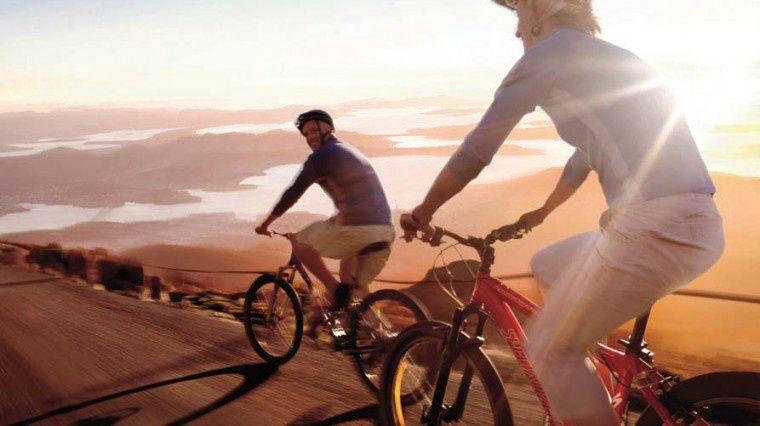 Mount Wellington Descent Bike Tour