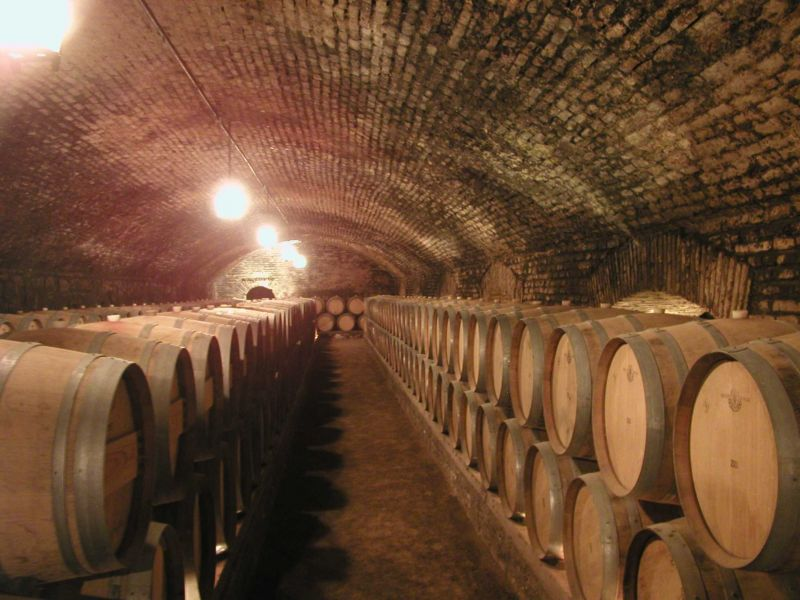 Full-Day Santiago Wineries Tour