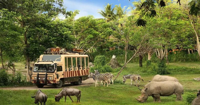 1-Day Bali Safari and Marine Park 'Rhino' Ticket