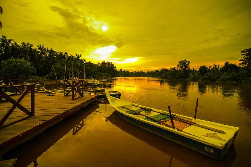 Kuala Selangor Visit & Fireflies River Cruise with Dinner
