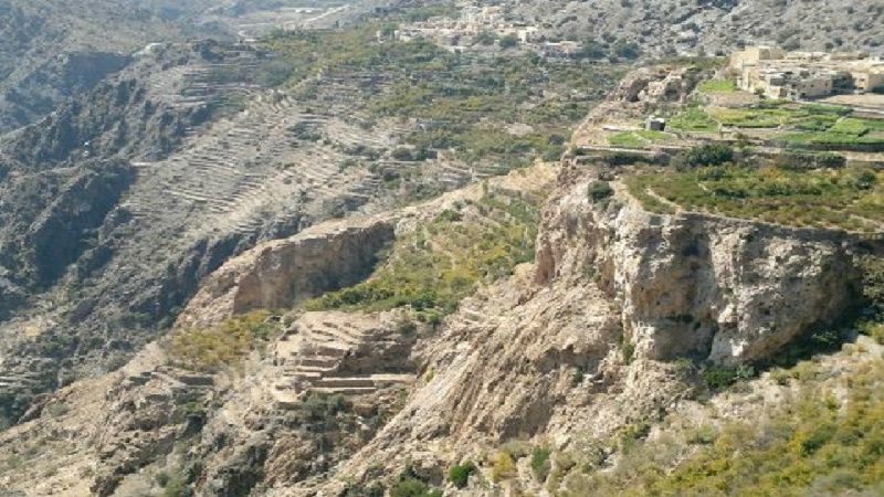 Jebel Akhdar Trip Cool & Green