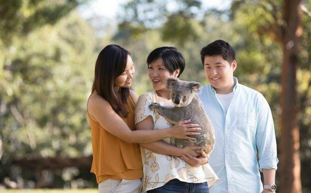1-Day Australia Zoo Tour from Brisbane or Gold Coast