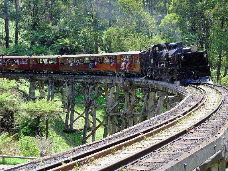 1-Day Puffing Billy and Healesville Sanctuary Tour