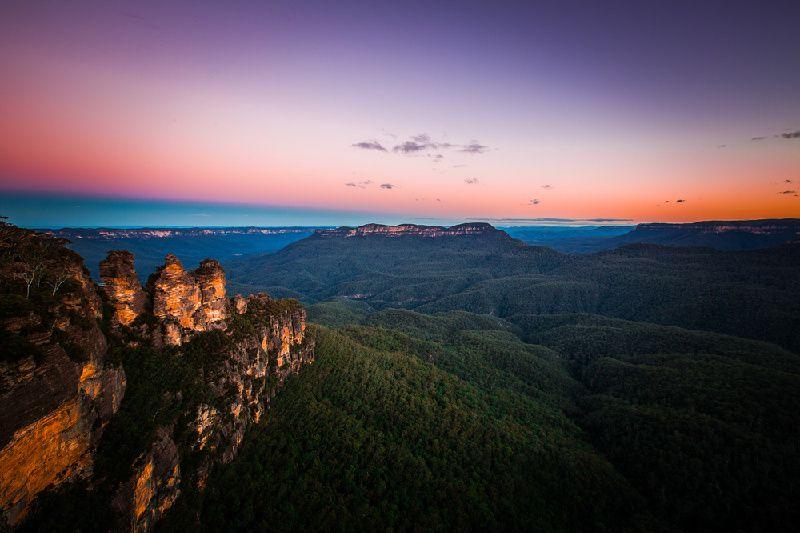 Luxury Blue Mountains Day Tour: VIP Koala Encounter