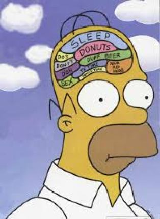 Billedresultat for brain fun