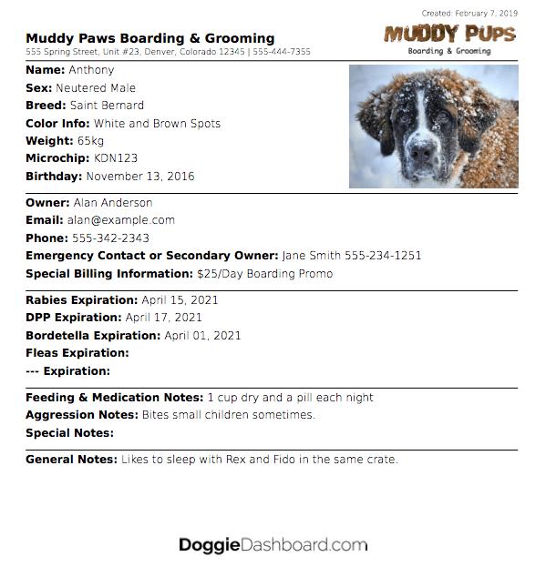Doggiedashboard Free Dog Daycare Kennel Boarding Software