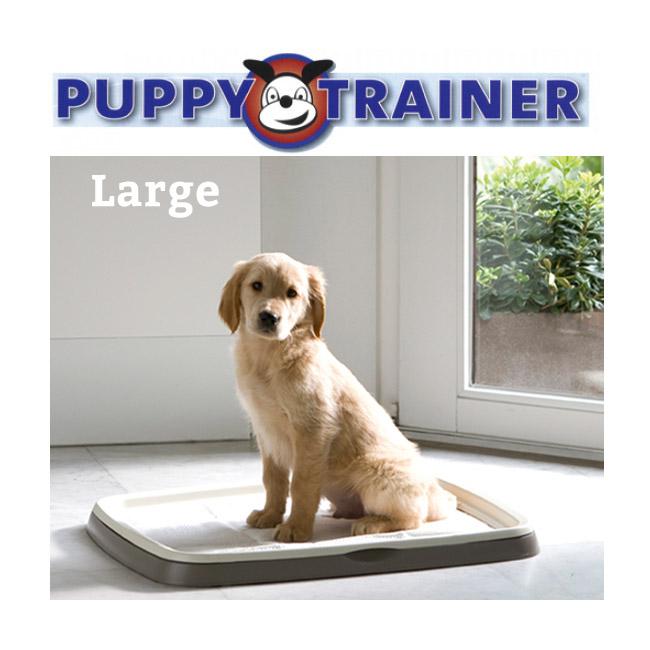 bac et tapis absorbeur d urine chien