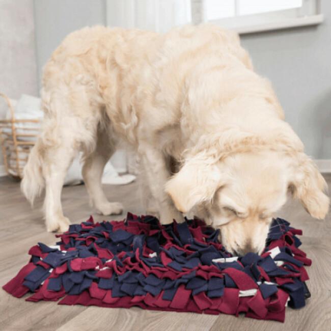 tapis de fouille pour chien activity sniffing trixie