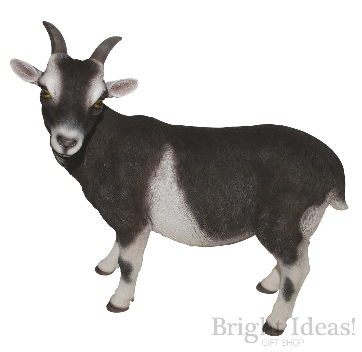 Goat Real Life Goats Farm Animals By Vivid Arts Xrl Goat D