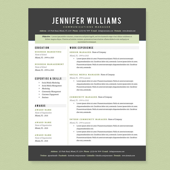 professional resume template pkg resume templates on creative