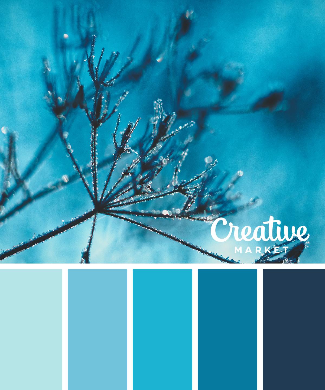 15 Downloadable Color Palettes For Winter