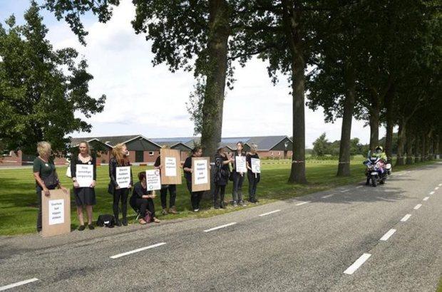 Activistas por los animales protestan en una granja avícola en Holanda, tras el sacrificio de millones de aves. (Foto Prensa Libre: EFE)
