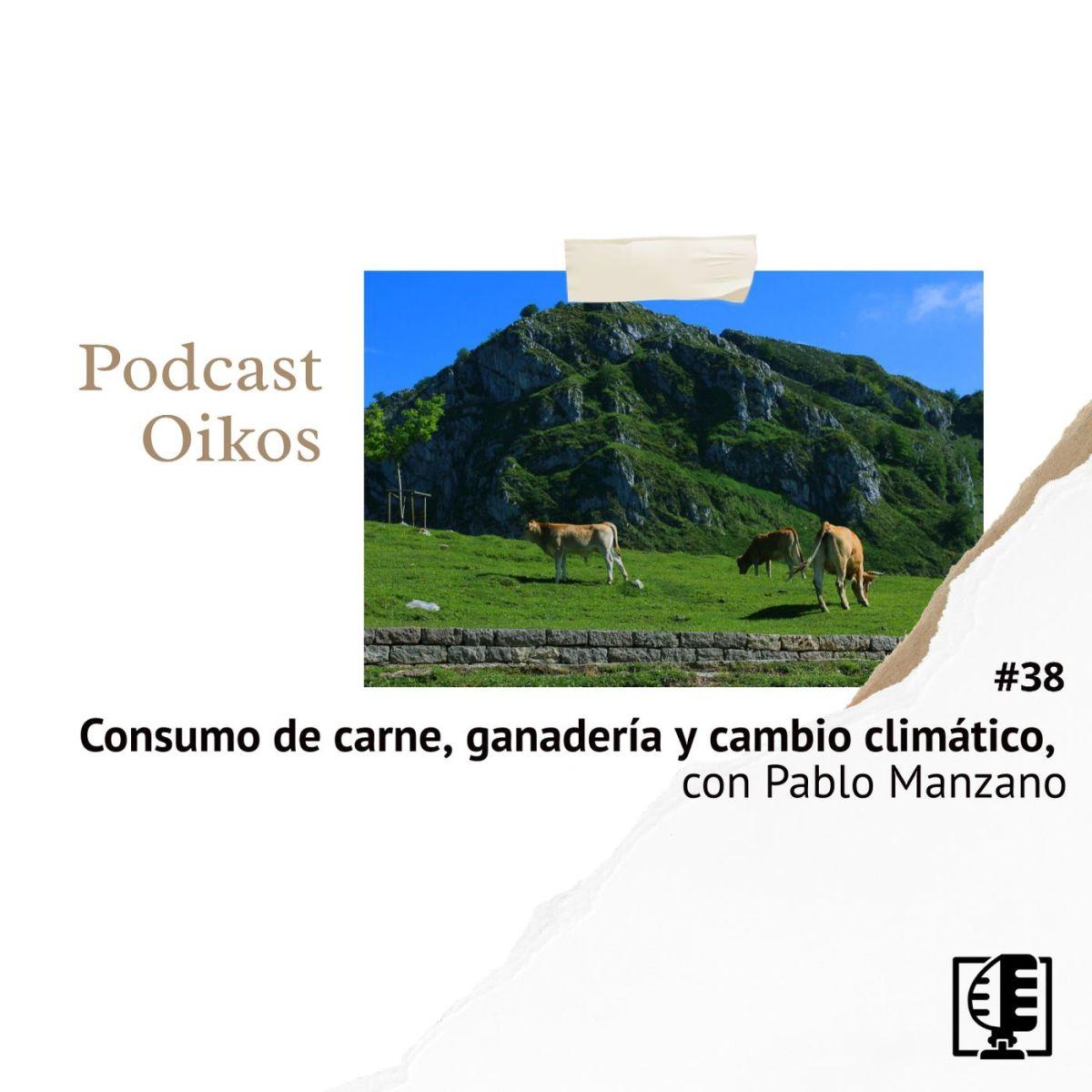 Consumo de carne, ganadería y cambio climático, con Pablo Manzano | Oikos #38