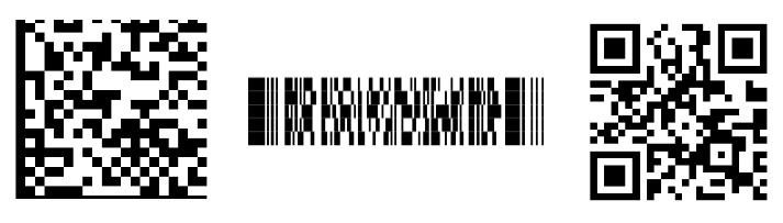 """2D Barcodes """"title ="""" 2D Barcodes """"/ ></p data-recalc-dims="""