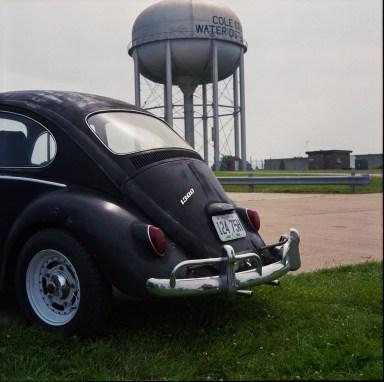 Noon-bug