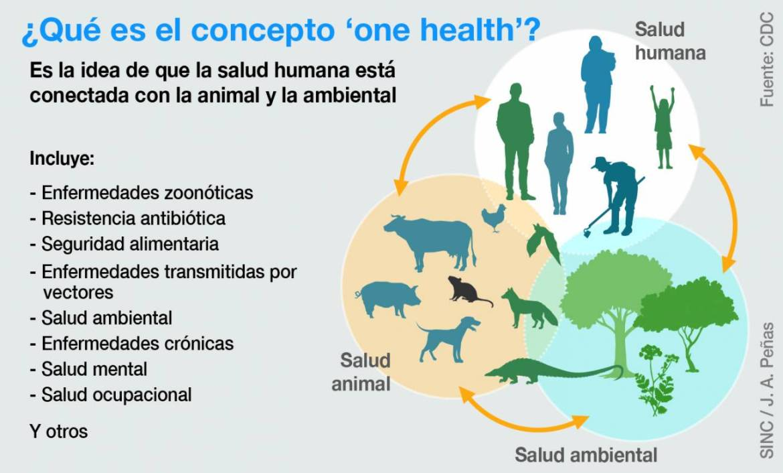 Tres dogmas para afrontar futuras pandemias