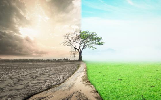 Il futuro sostenibile tracciato da Vontobel
