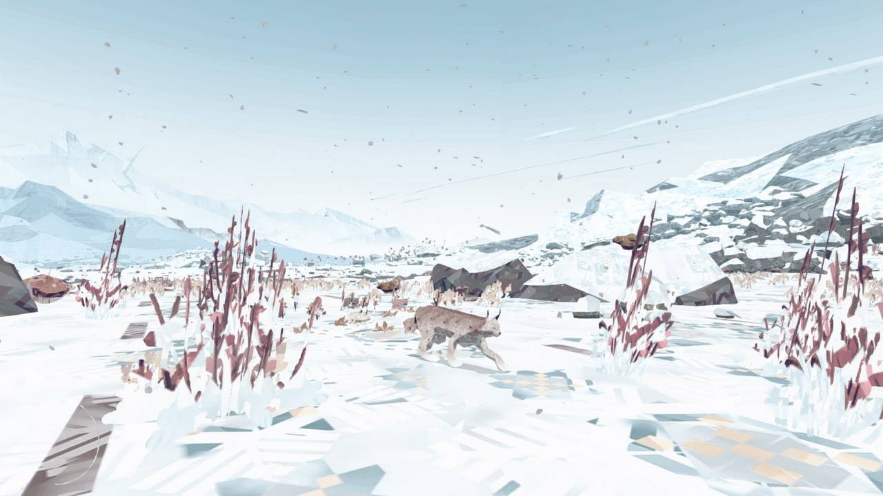 Shelter 2 - Review