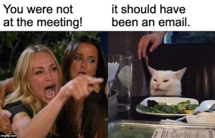 Zoom Meeting Audio Only Zoom Meeting With Video Make A Meme