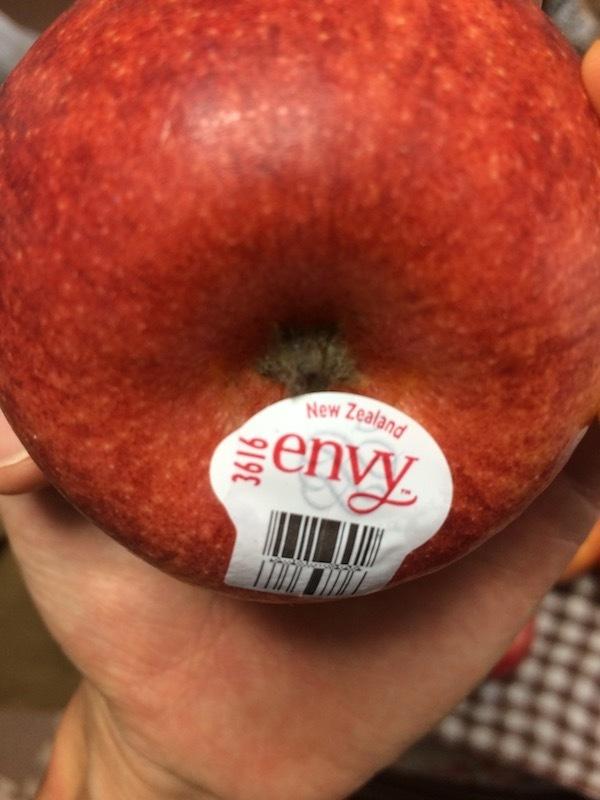 エンヴィー(envy)大きさと重さ