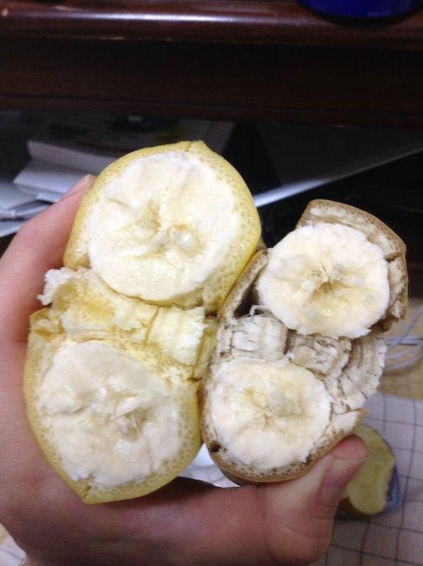 コープ(生協)の園地指定フィリピン産高原バナナのサイズが大きい