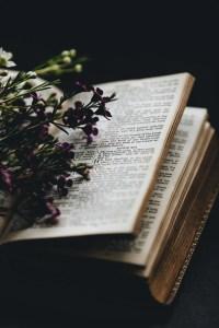 The quartet conversation: God's undiluted word
