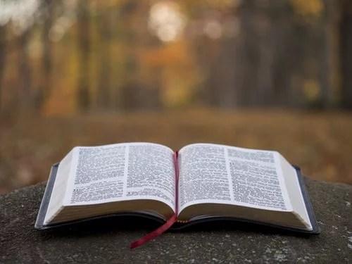 bible verses on God's love