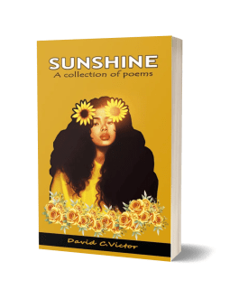 Sunshine Ebook