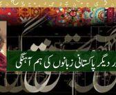 اردو اور دیگر پاکستانی زبانوں کی ہم آہنگی —– نجیبہ عارف