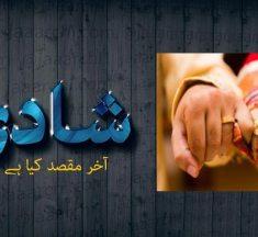 شادی: آخر مقصد کیا ہے —– احمد الیاس