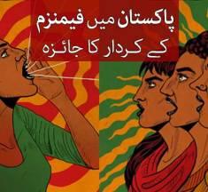 پاکستان میں فیمنزم کے کردار کا جائزہ —- وحید مراد