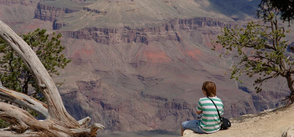 Grand Canyon (2005)