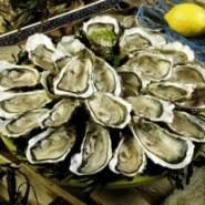Amerikaanse oesters (2014)